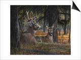Autumn Royalty Prints by Kevin Daniel