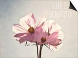 Life Is Beautiful Prints by Susannah Tucker