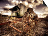 Harvest Print by Stephen Arens