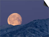 Moon over the Winter Alaska Range, Denali National Park, Alaska, USA Print by Tom Walker