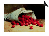 A Spilled Bag of Cherries Poster von Antoine Vollon