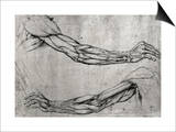 Studie af arme Posters af Leonardo da Vinci