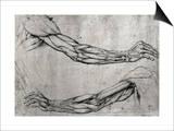 Leonardo da Vinci - Studie rukou Plakát