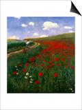 The Poppy Field Kunstdrucke von Paul von Szinyei-Merse