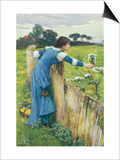 Spring Prints by John William Waterhouse