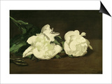 Branch of White Peonies and Secateurs, 1864 Prints by Édouard Manet