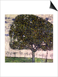 The Apple Tree, 1916 Prints by Gustav Klimt