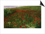 The Poppy Field, 1896 Prints by Paul von Szinyei-Merse