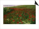 The Poppy Field, 1896 Prints by Paul von Szinyei-Merse