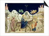 The Flight into Egypt Print by  Giotto di Bondone