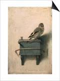The Goldfinch, 1654 Prints by Carel Fabritius