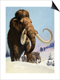 Mammoths from the Ice Age, 1969 Prints by  Mcbride
