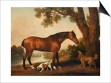 A Bay Hunter, a Springer Spaniel and a Sussex Spaniel, 1782 Art by George Stubbs