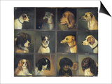 Twelve Favourite Dogs, 1883 Prints by Edwin Frederick Holt