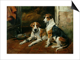 Hounds in a Stable Interior Posters by John Emms