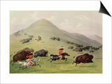 The Buffalo Hunt, C.1832 (Coloured Engraving) Prints by George Catlin