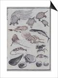 Undersea Creatures, from a Manga (Colour Woodblock Print) Posters van Katsushika Hokusai