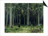 Countess Mordvinov's Forest, 1891 Poster by Ivan Ivanovitch Shishkin