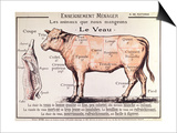 Veal: Diagram Depicting the Different Cuts of Meat Print by  French School