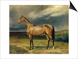 Abdul Medschid' the Chestnut Arab Horse, 1855 Posters by Carl Constantin Steffeck