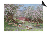 Appleblossom Prints by William Biscombe Gardner