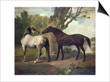 Two Horses in a Landscape Posters by George Stubbs