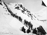 Prospectors Climbing the Chilkoot Pass During the Klondike Gold Rush Art