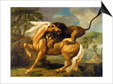 A Lion Attacking a Horse, c.1762 Print by George Stubbs