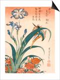 Katsushika Hokusai - Kingfisher, Irises and Pinks (Colour Woodblock Print) - Poster