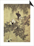 Eight Red-Crested Herons in a Pine Tree, 1754 Prints by Hua Yan