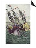 Giant Octopus, Illustration from 'L'Histoire Naturelle Generale Et Particuliere Des Mollusques' Posters van  French