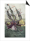 Giant Octopus, Illustration from 'L'Histoire Naturelle Generale Et Particuliere Des Mollusques' Prints by  French