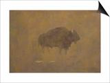 Buffalo in a Sandstorm (Oil on Paper Mounted on Board) Art by Albert Bierstadt