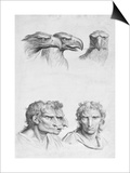 Similarities Between the Head of an Eagle and a Man Poster by Charles Le Brun