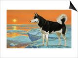 Husky Dog Print by Angus Mcbride