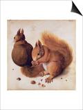 Squirrels, 1512 Posters by Albrecht Dürer