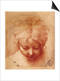 Study of a Head Posters by  Parmigianino