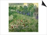 Daubigny's Garden, 1890 Prints by Vincent van Gogh