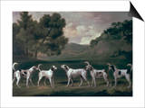 Foxhounds in a Landscape, 1762 Posters by George Stubbs