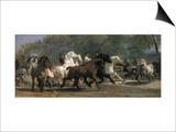 Study for the Horsemarket, 1900 Poster by Rosa Bonheur