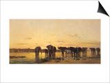 African Elephants Prints by Charles Emile De Tournemine