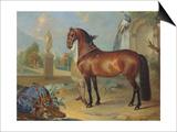 The Bay Horse' Sincero' Art by Johann Georg Hamilton