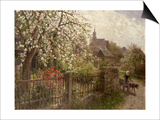 Apple Blossom Posters by Alfred Muhlig