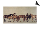 Mares and Foals Without a Background, circa 1762 Posters by George Stubbs
