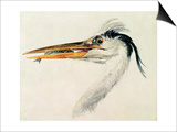 Heron with a Fish Prints by J. M. W. Turner