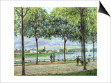 The Avenue of Chestnut Trees, St. Cloud, 1878 Posters by Alfred Sisley