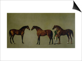 Whistlejacket and Two Other Stallions with Simon Cobb, the Groom, 1762 Prints by George Stubbs