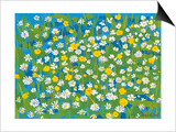 Buttercups and Daisies, 2009 Posters by Sarah Gillard