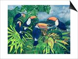 Toucan Talk Prints by Lisa Graa Jensen