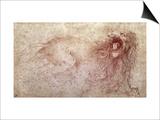 Sketch of a Roaring Lion Art by  Leonardo da Vinci